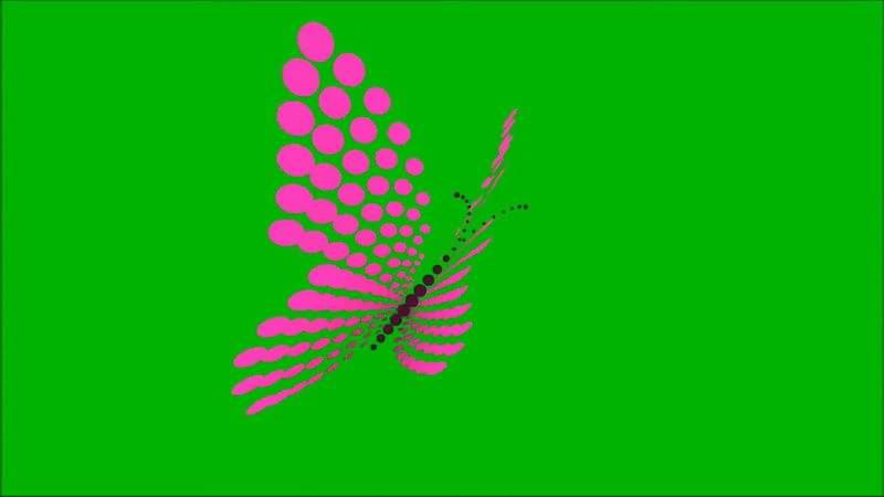 绿屏抠像蝴蝶.jpg