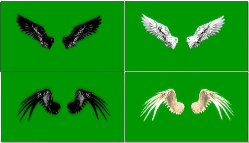 绿屏抠像天使恶魔翅膀.jpg