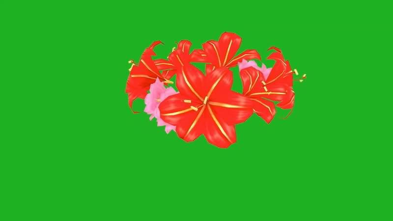 绿屏抠像花环.jpg
