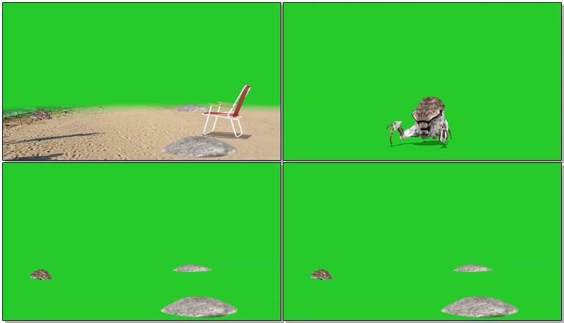 绿屏抠像海怪.jpg