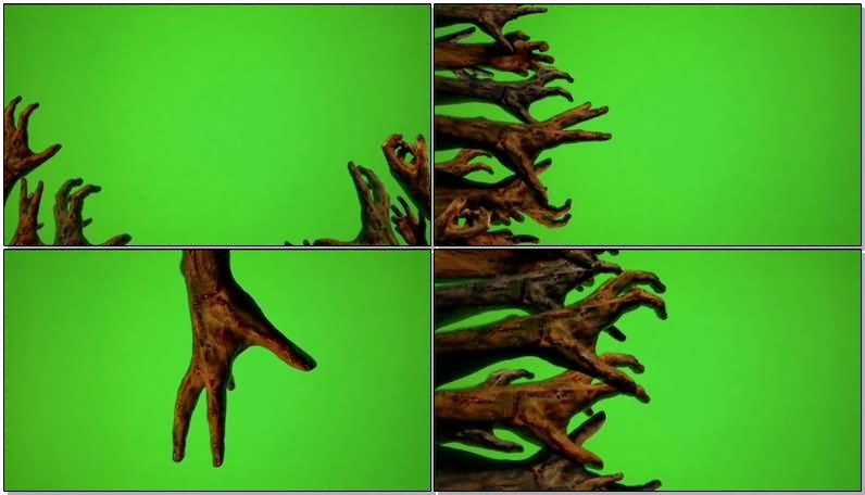 绿屏抠像僵尸手臂.jpg