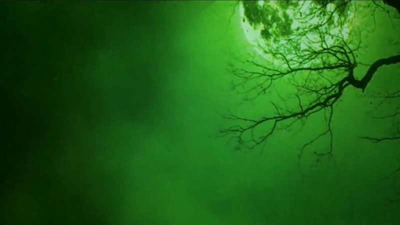绿屏抠像恐怖满月夜晚.jpg