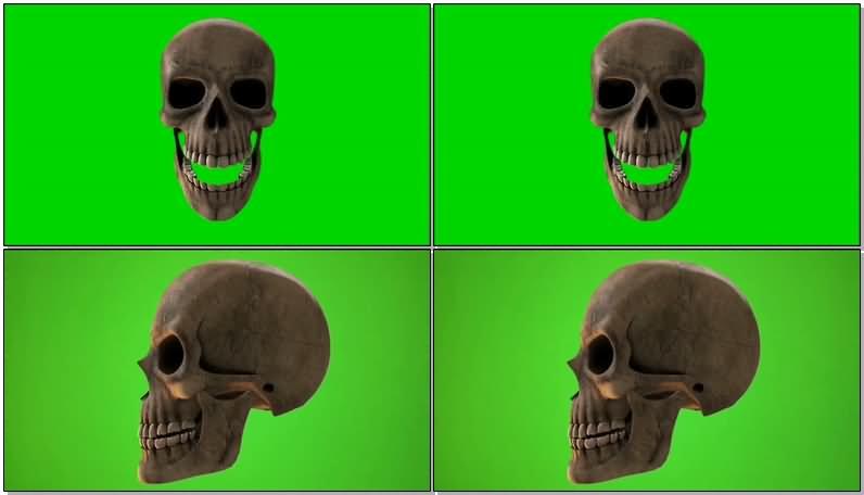 绿屏抠像骷髅头.jpg