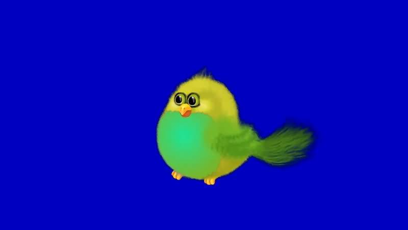 绿屏抠像卡通小鸟.jpg