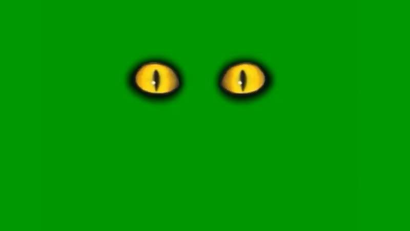 绿屏抠像恐怖的眼睛.jpg