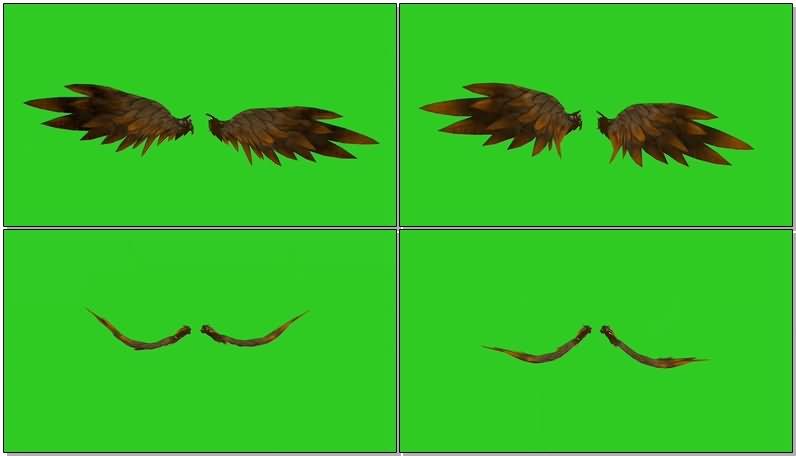 绿屏抠像恶魔翅膀1.jpg