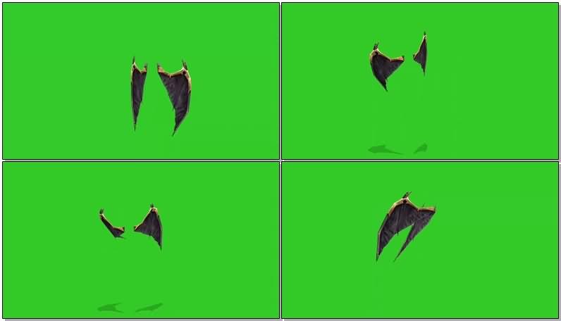 绿屏抠像恶魔翅膀.jpg