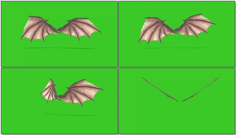 绿屏幕抠像蝙蝠翅膀.jpg