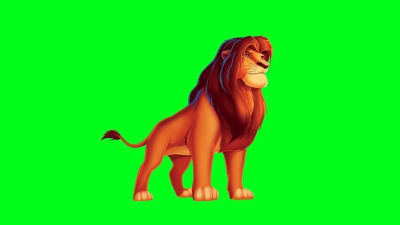 绿屏幕抠像狮子王视频素材