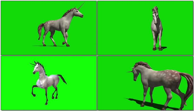 绿屏抠像视频素材独角兽马