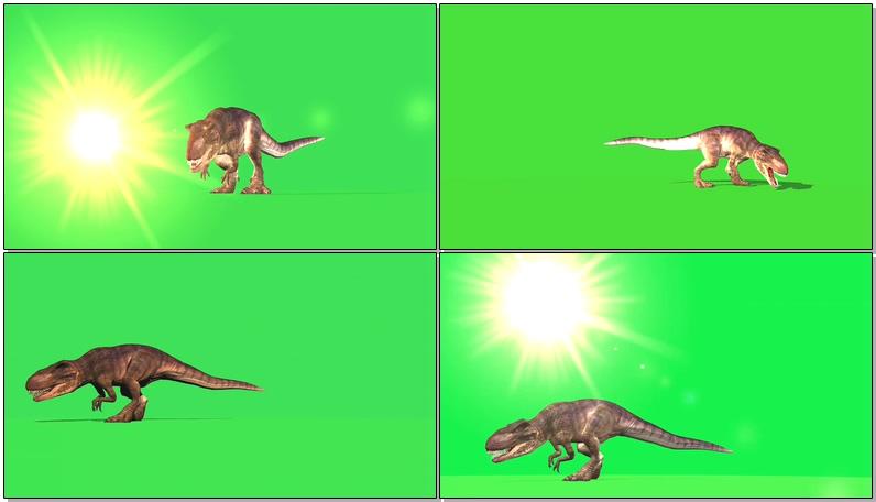 绿幕视频素材霸王龙
