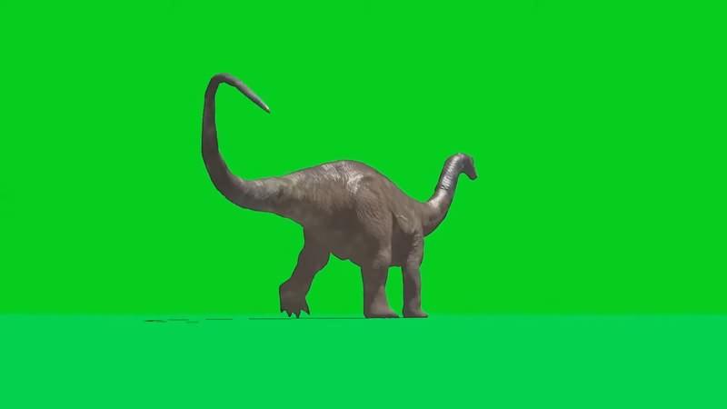 绿幕视频素材梁龙