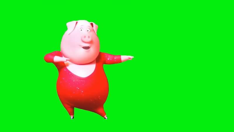 绿幕视频素材粉色小猪