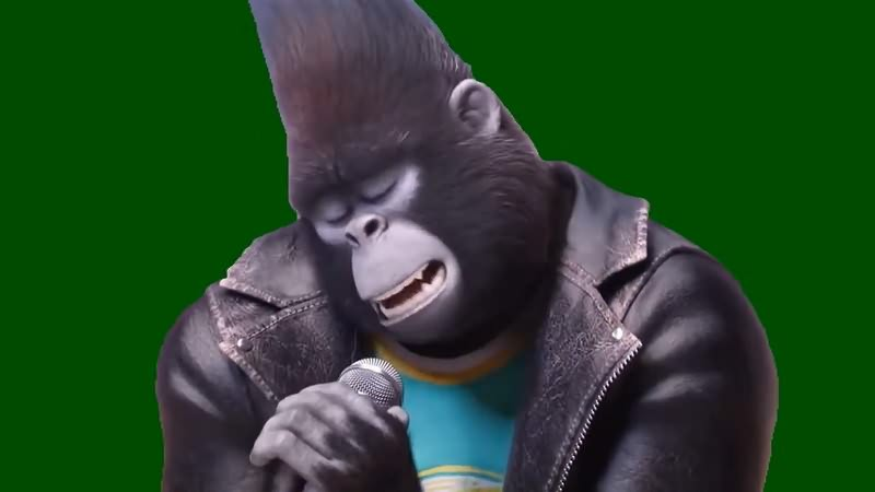绿幕视频素材唱歌的猩猩