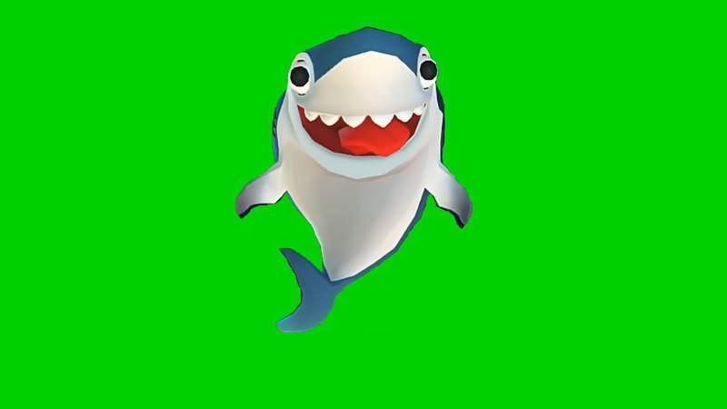 绿幕视频素材鲨鱼宝宝