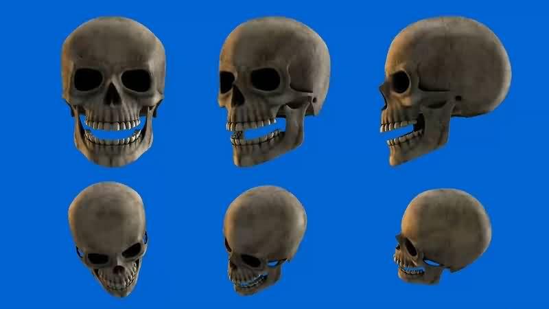绿幕视频素材骷髅头骨