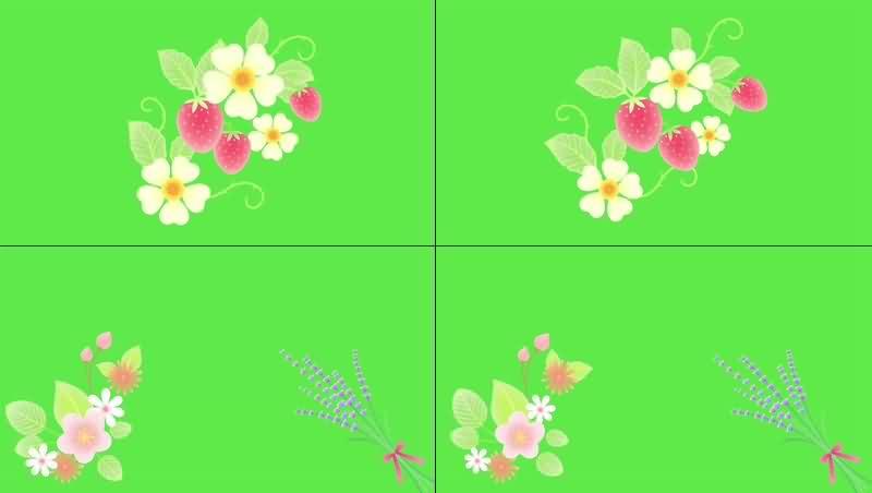 绿幕视频素材花草