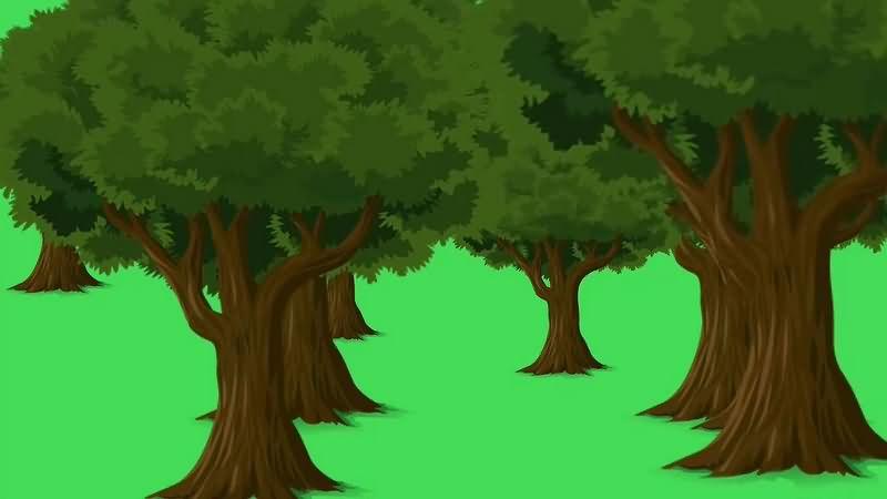 绿幕视频素材森林