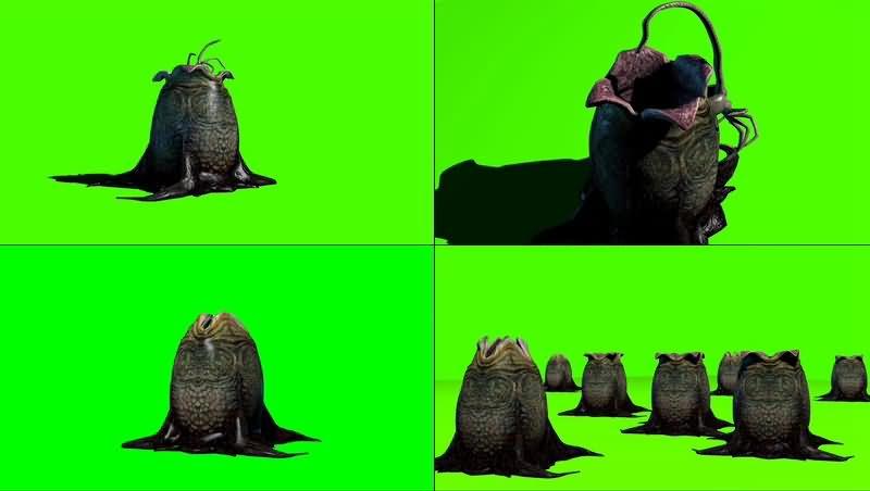 绿幕视频素材异形蛋