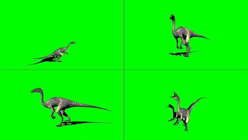 绿幕视频素材秀颌龙