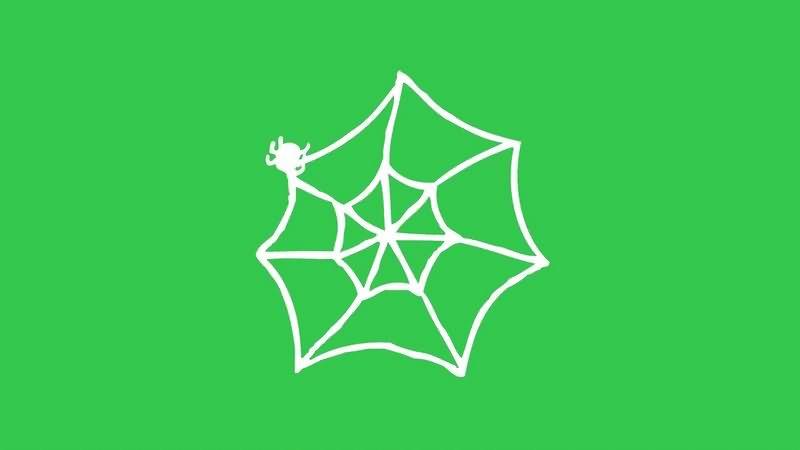 绿幕视频素材蜘蛛网