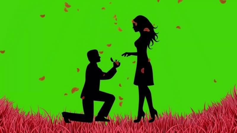 绿幕视频素材求婚