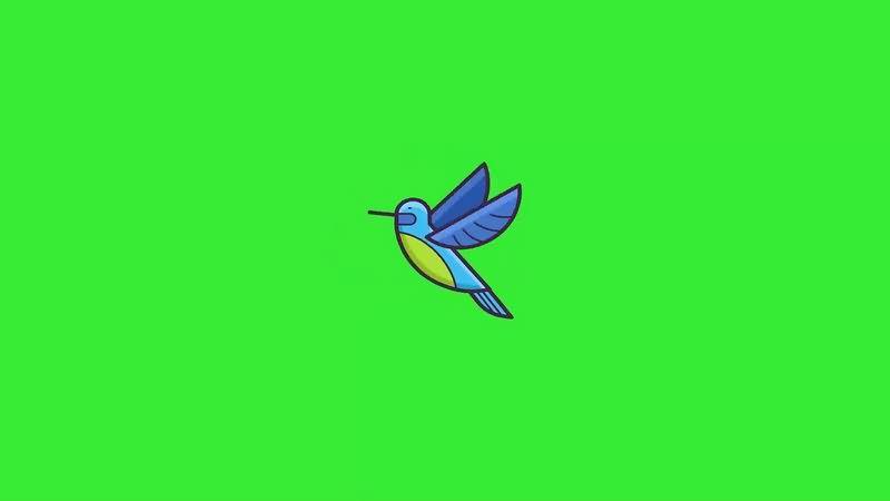 绿幕视频素材飞鸟