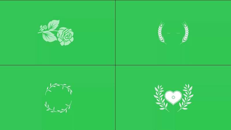 绿幕视频素材花纹