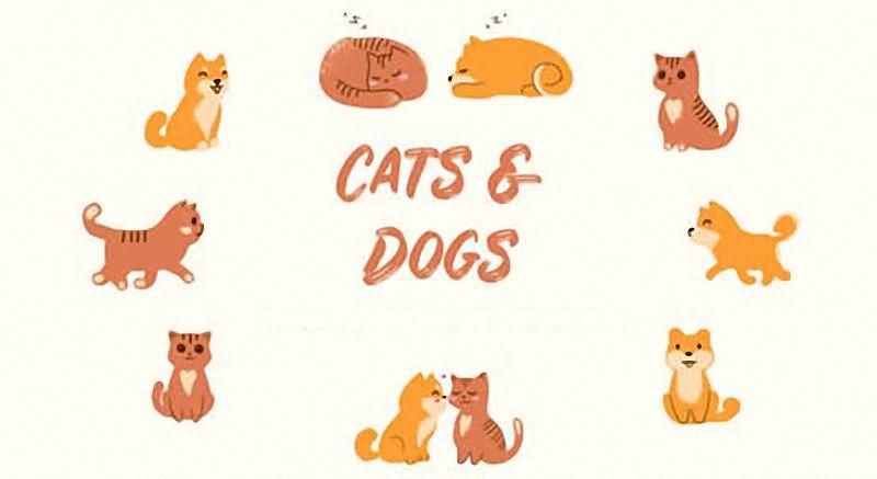 手绘猫狗可爱卡通动画视频素材[16个]