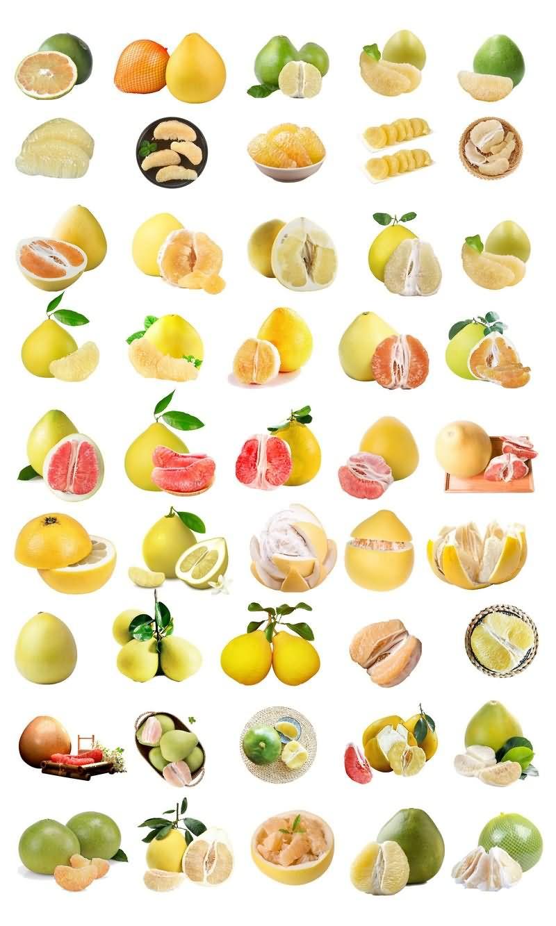 柚子免抠分层PSD素材