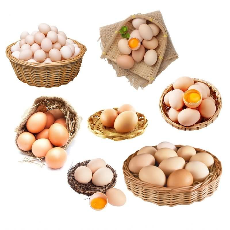 鸡蛋免抠分层PSD素材