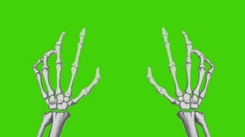 绿幕视频素材骷髅爪