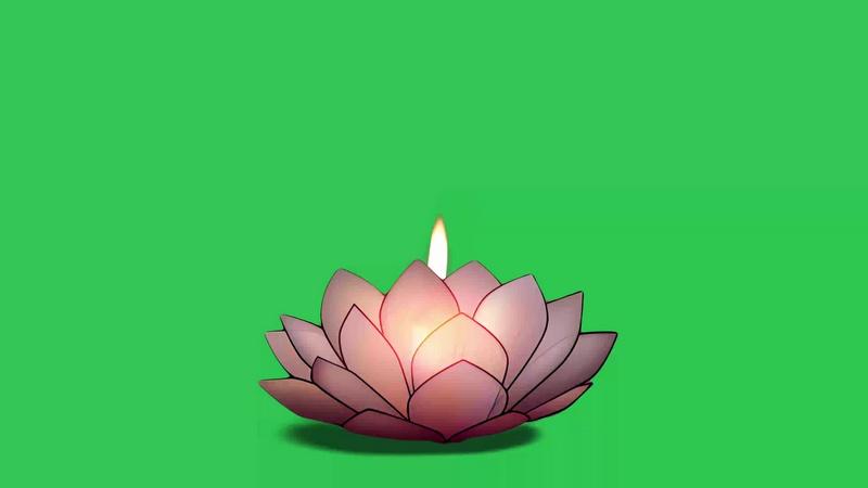 绿幕视频素材莲花灯