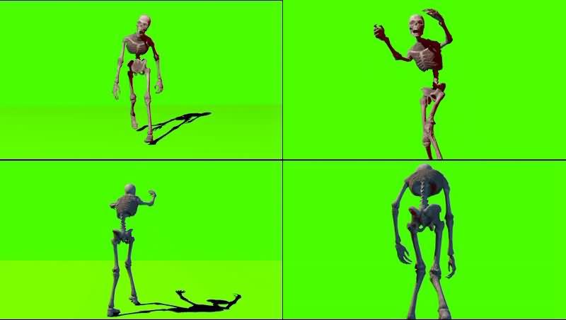 绿幕视频素材骷髅骨架