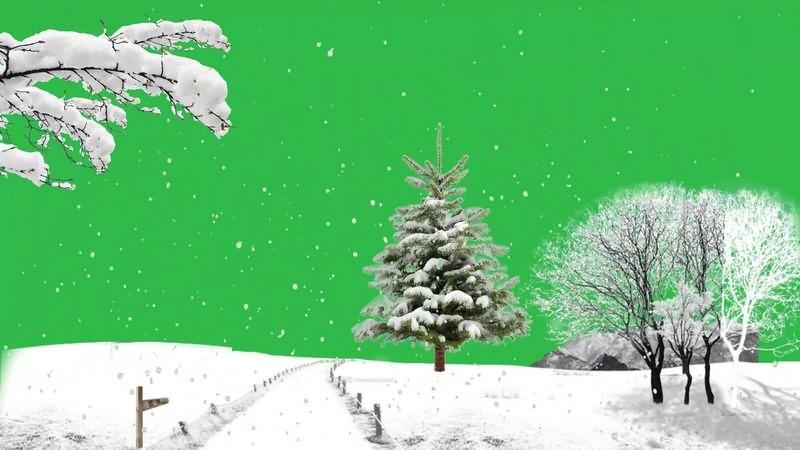 绿幕视频素材雪景