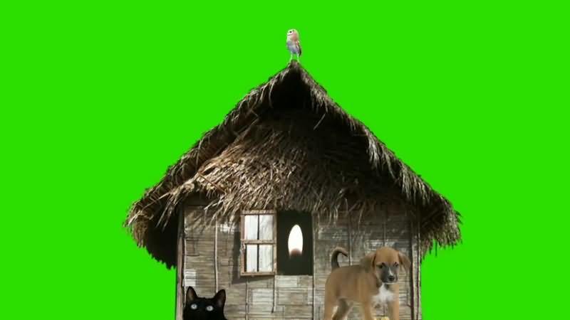 绿幕视频素材茅草屋